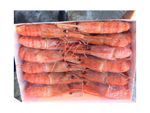 креветка гребенчатая ботан размер 20 шт/кг короб 6кг,